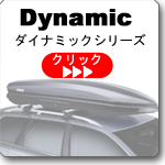 THULE Dynamic